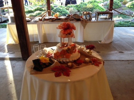 Such a beautiful cake!  The buffet table was set up behind in the patio.