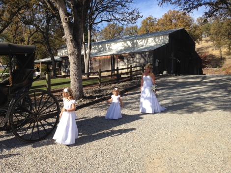 When I arrived, Amy was with Kurt's daughters making their way to the carriage for some photos.  They look like Amy's mini me's!!!