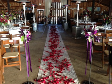 The aisle was set up between the tables and lined with rose petals.  Just lovely.
